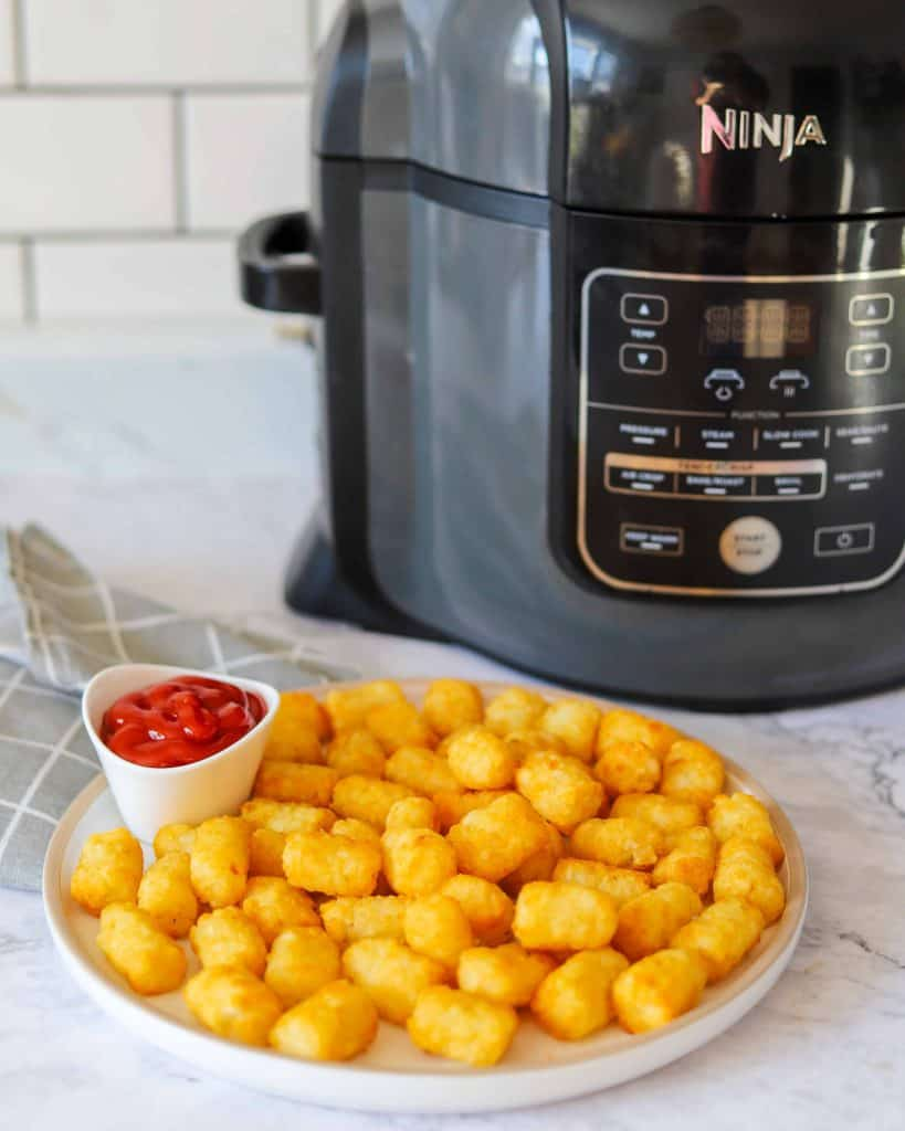 How to Make Tater Tots in an Air Fryer